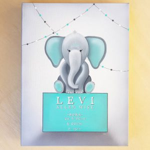 Baby nursery canvas art