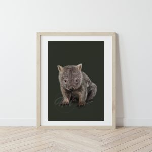 Australian Native Animals Fine Art Prints